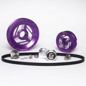 Raptor-Purple