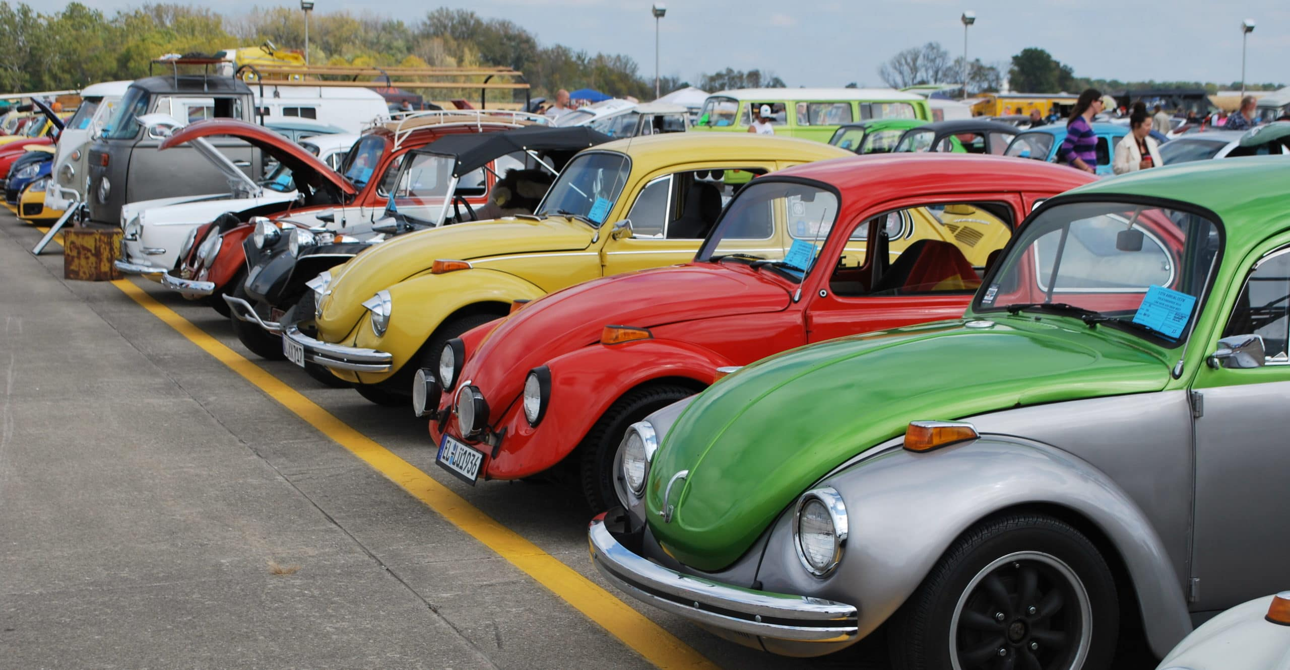 VW bugs lined up in parking lot